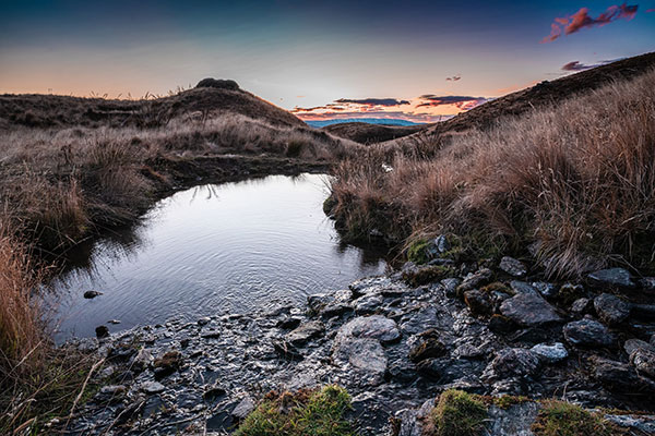 Learn about our land and life at Criffel Station. Its What to do in Wanaka.